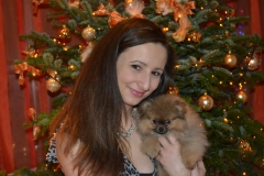 Pomeranian-BONITA