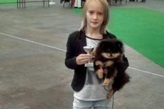 Pomeranian-LUXURY-LAIT-VELLORY-JIN-s-Adinkou